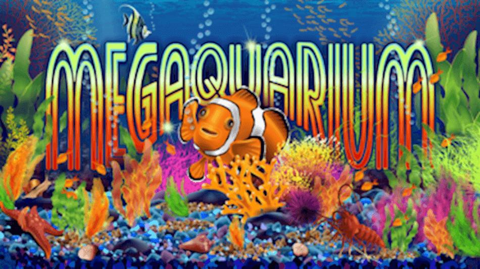 megaquarium-fish