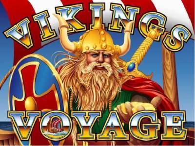Viking's Voyage